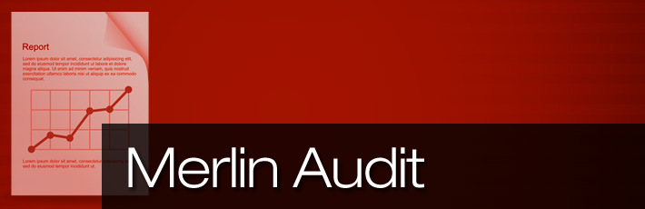 Merlin Audit